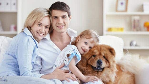 Wills & Trusts dog-young-family Direct Wills Deal
